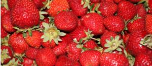 Pernes fraise