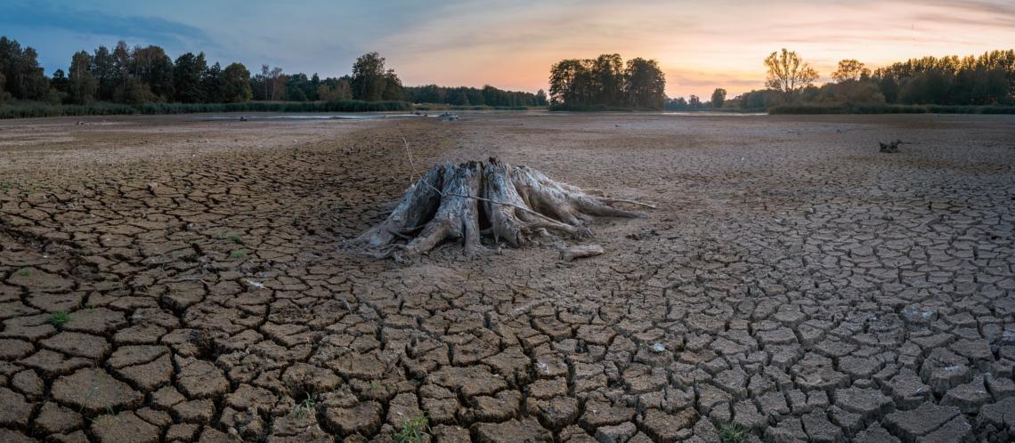 Sécheresse : des restrictions d'eau sur quatre secteurs du Vaucluse